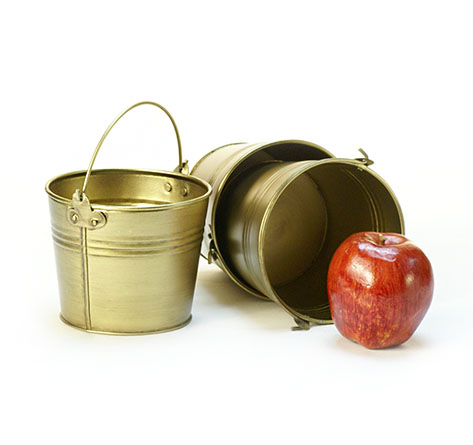 Round Pail Galvanized 5 inch Gold Look