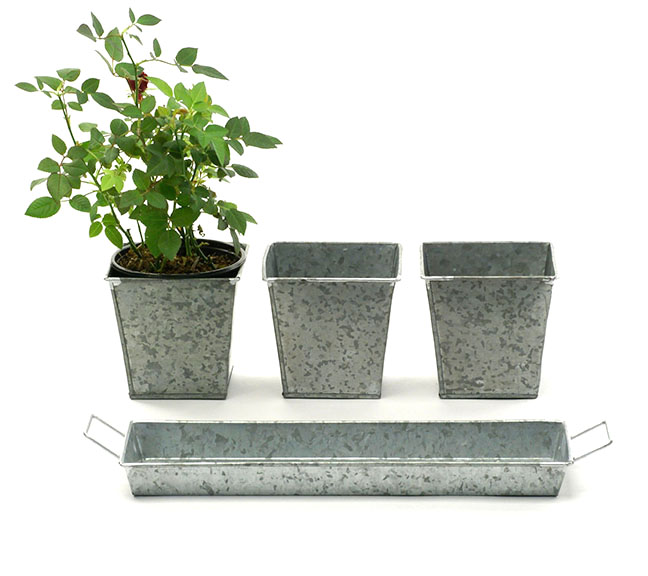 Galvanized Herb Pots and Tray - 3 Pots + Tray - Click Image to Close