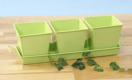 Herb Container Set - 3 Pots + Tray Square Galvanized Lime Green