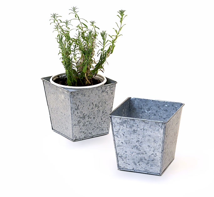 Galvanized Herb Square Pot