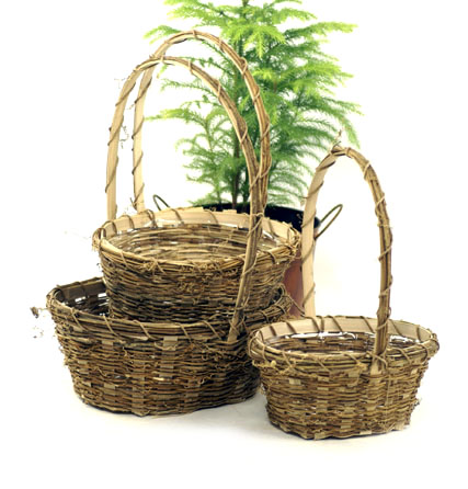 Vine Oval Shop Basket Set of 3