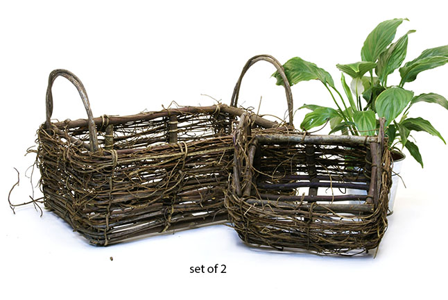 Vine Rectangle Basket Set of 2